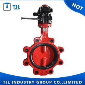 China Lug Type Aluminium Worm Gear Ball Plate Double Shaft Singal Wafer Butterfly Valve on sale