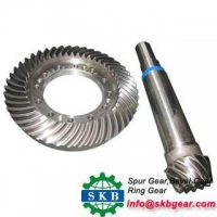 Rear Axle Bevel Pinion Gear for Truck Dana