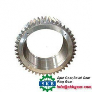 China Large Size Internal Ring Gear Inner Ring Gears According to Drawing on sale