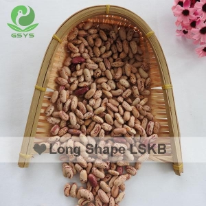 China beans and pulses light-speckled-kidney-beans-long-shape on sale