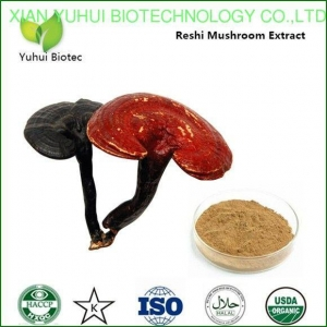 China Reishi Mushroom Extract,reishi extract,reishi mushroom powder,lingzhi extract on sale