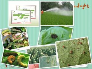 China Bio-pesticide SPINOSAD 90%TC;48% SC on sale