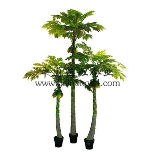 China (Indoor & Outdoor) artificial papaya TREE on sale