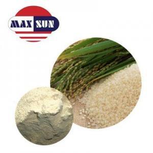 China Sun Series Organic Rice Protein Powder on sale