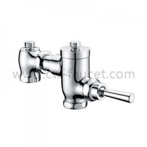 China Toilet Flush Valve(Handle Type) on sale