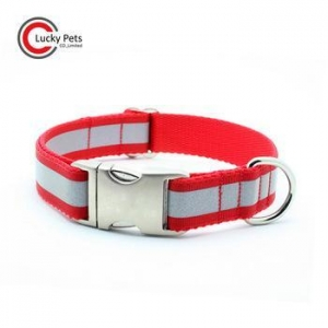China Reflective dog collar, dog leash, pet product on sale