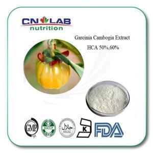 China Pure Garcinia Cambogia Extract 60 Hca Powder on sale