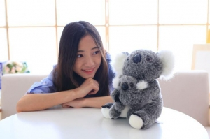 China Soft Koala Toy Suppliers on sale