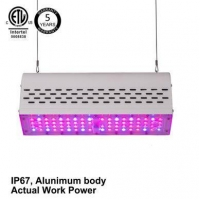 China LED Plant Grow Light Bar on sale