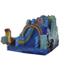 Commercial Inflatable Slides