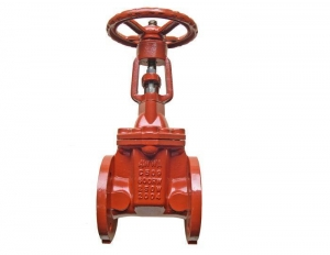 China CI Resilient Gate Valve RS and NRS on sale
