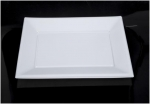 Plate Transparent Square Thermoforming Plate