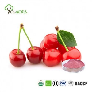 China Organic Cherry Powder on sale