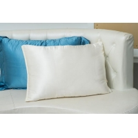 Silk Filled Pillow