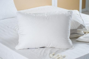 China 100% Mulberry Silk Filled Pillow on sale