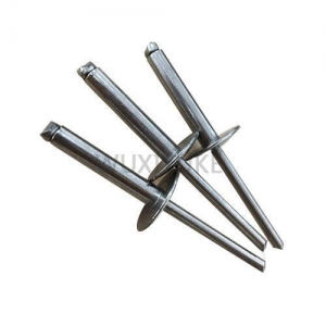 China Full Stainless Steel Dome Head Blind Rivet with Large Head on sale