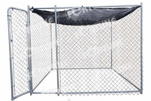 China Exercise Pen on sale