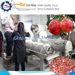China Industrial pomegranate breaking and peeling machine on sale