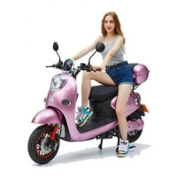 China 48V Electrical Scooter 800w Bicycle Lithium Battery Electric Motorcycle on sale