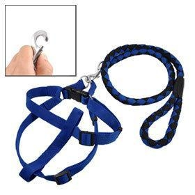 China Dog products Nylon Rope Pet Doggy Dog Leash Collar on sale
