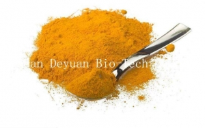 China 95% Water Soluble Curcumin 98% Extraction Plant Plant Extract Powder on sale