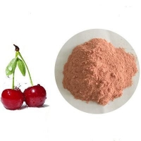 China Acerola Cherry Juice Powder on sale
