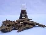 China Agarwood Oil / Oudh / Aloeswood Oil on sale