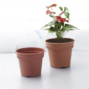 China Basic Round Clay Nursery Pot wholesale