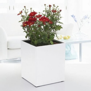 China Large Self-Watering Planter Box Wholesales on sale