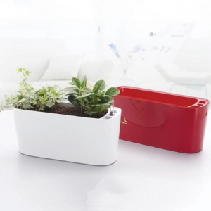 China Windowsill Self Watering Flower Pot Dual Color on sale