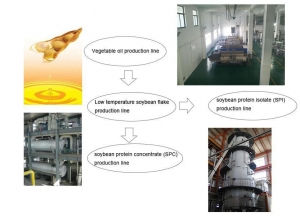 China Vegetable Protein Production Project on sale