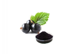 China Black Currant Extract on sale