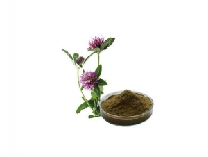 China Alfalfa Extract on sale