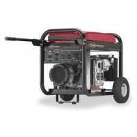 Briggs and Stratton Limited 2-Year Warranty