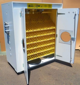 China SH2160 Automatic Digital Egg Incubator for 2160 eggs on sale