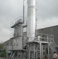 China Biomass boiler on sale