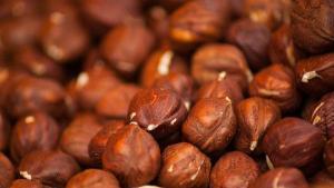 China Big Bags Organic raw hazelnuts (with skin) Midzu 5 Kg on sale
