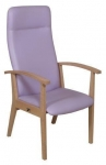 Healthcare and education Amelia armchair