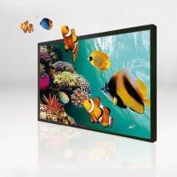 English Naked eye 3D 65 inch horizontal screen display