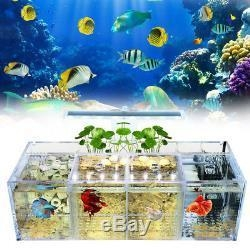 China LED Light Acrylic Clear Aquarium Mini Betta Fish Tank Desktop Water Pump Filter on sale