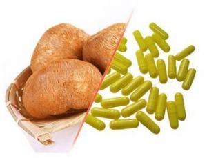 China Hericium erinaceus (Lion's Mane Mushroom) Capsule on sale
