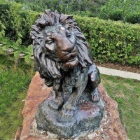 China Life size outdoor bronze or brass lions statue lioness sculpture large lion on sale