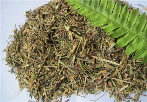 China Qu mai Special medicine for woman Lilac Pink Herb on sale