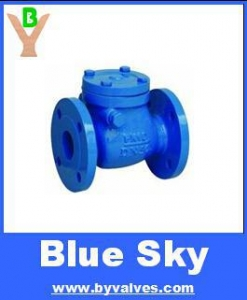 China DIN CAST IRON SWING CHECK VALVE PN25/PN40 on sale