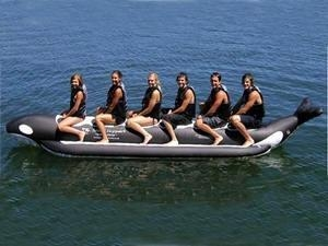 China Singel Tube Whale Ride 6 Passenger for Summer Water Sports on sale