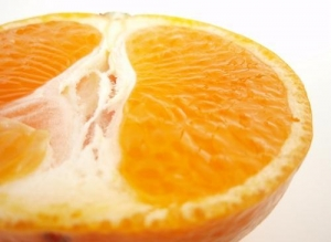 China Feed Additives Citrus Extract on sale