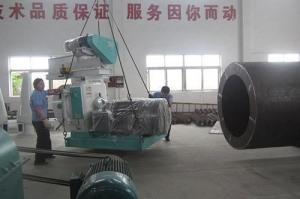 China High quality long duration time ring dies fish feed pellet machine best for farm on sale