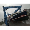 China Boat Hoist Crane for sale