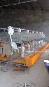 China Rabbit Cage Automatic Rabbit Cage on sale