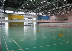 China Badminton court on sale